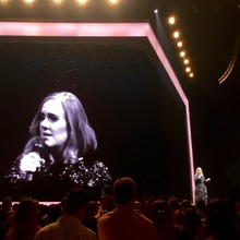 adele announcements notifications