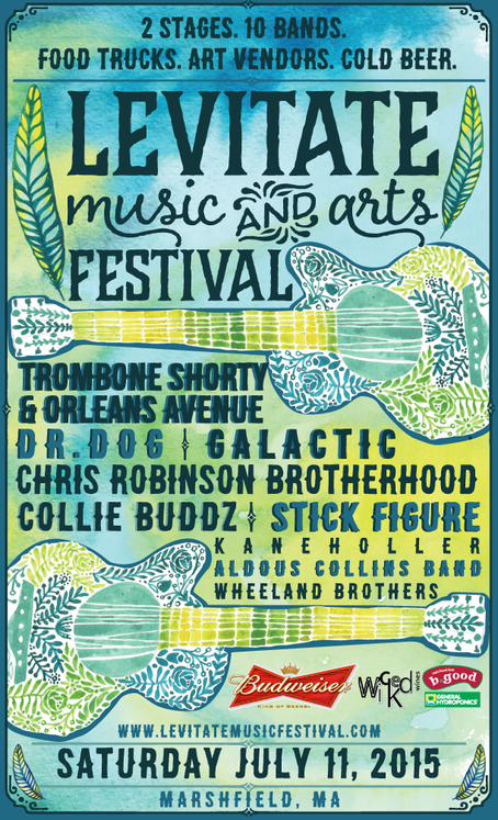levitate arts festival marshfield