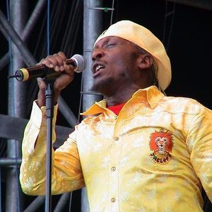 Image result for Jimmy Cliff in concert