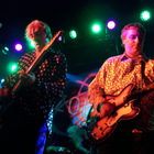 Robyn Hitchcock live