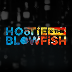 Hootie and the blowfish tampa