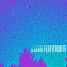 LightDivides live