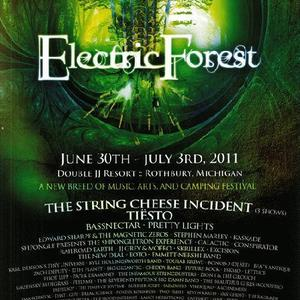 electric forest festival rothbury jun